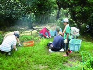 本殿裏の庭園の草刈り作業