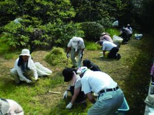 無心に草を刈る-儀式殿南側